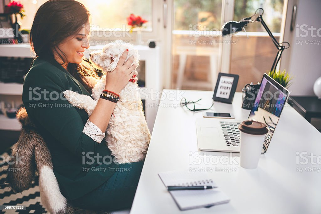 I'm taking my dog with me everywhere! stock photo