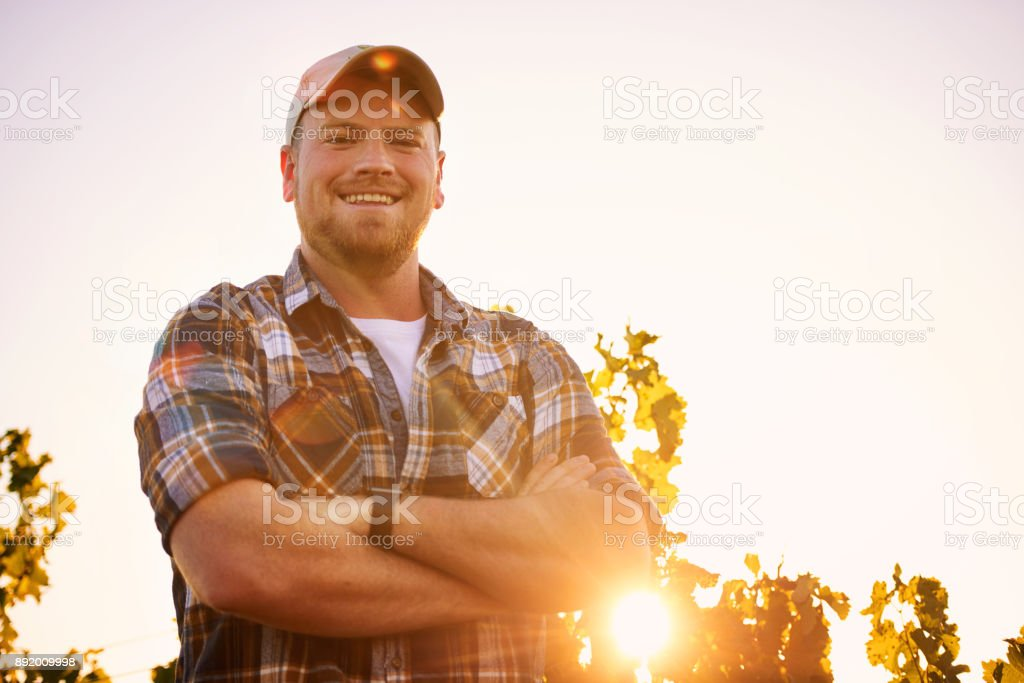 I'm the master of this vineyard - foto stock