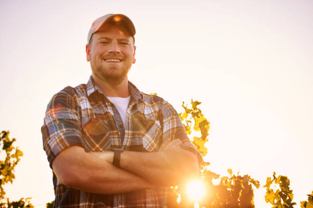 i'm the master of this vineyard - farmer stock photos and pictures
