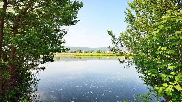 maas, maas in belgië - maasvallei stockfoto's en -beelden