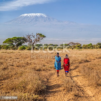 Two African women  from Maasai tribe crossing savannah with offspring on their back, Mount Kilimanjaro on the background, central Kenya, Africa. Maasai tribe inhabiting southern Kenya and northern Tanzania, and they are related to the Samburu.