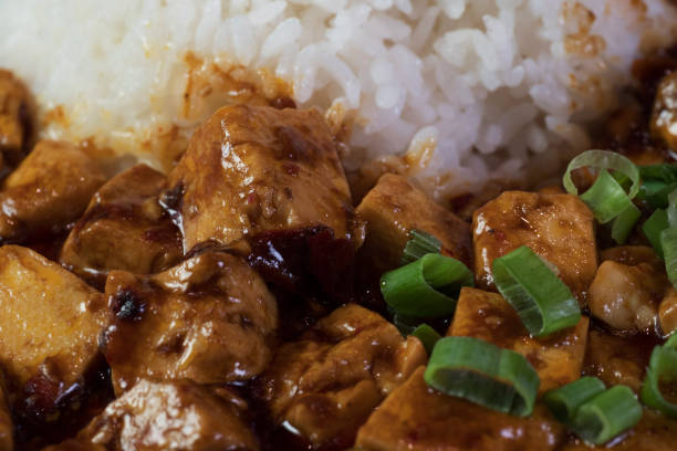 Mabo Tofu Nahaufnahme Spicy – Foto