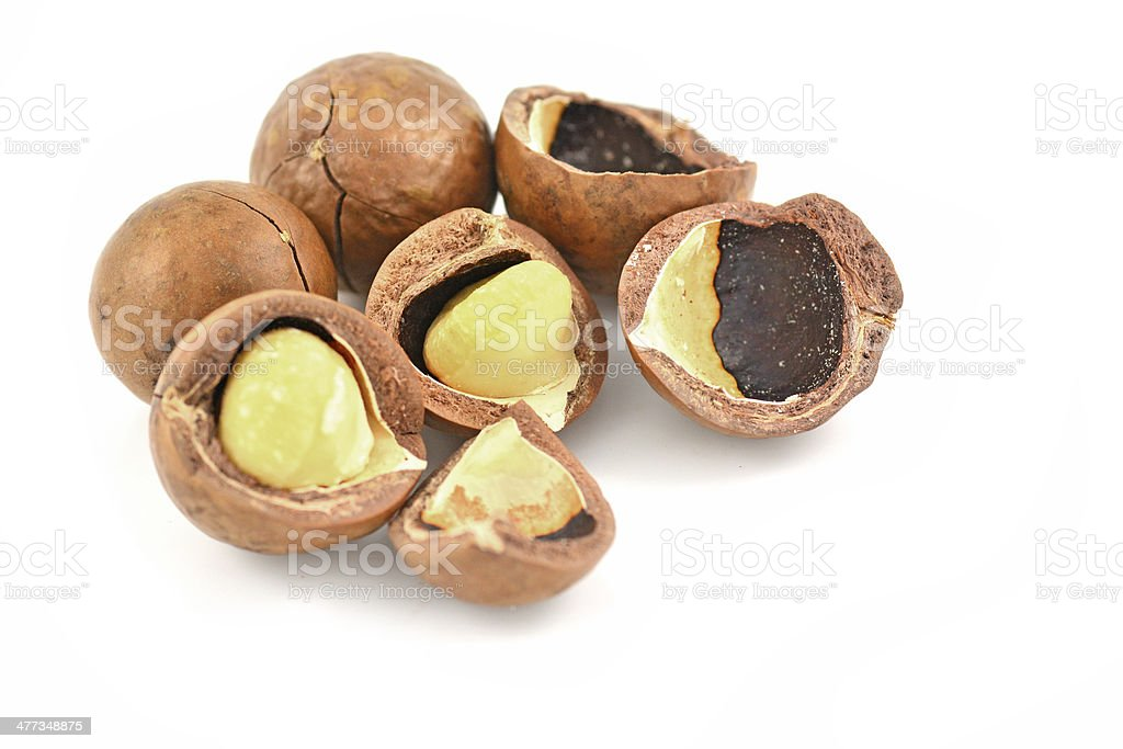 macadamia nuts royalty-free stock photo
