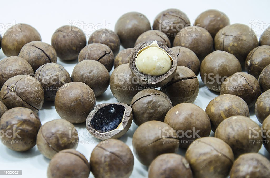 macadamia foto de stock libre de derechos