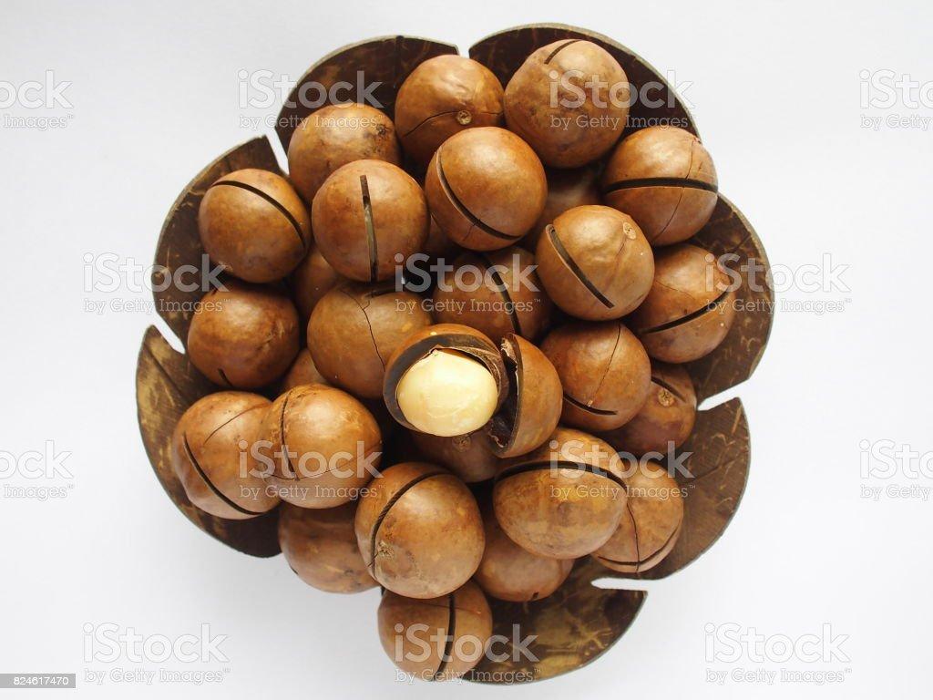 macadamia stock photo