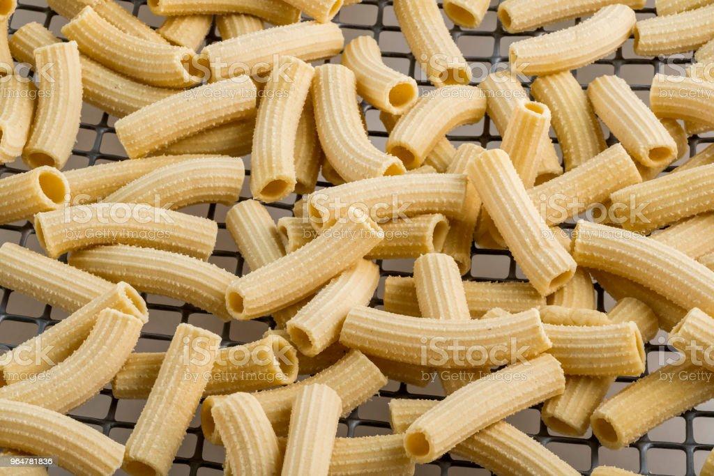 Macaroni pasta in drying royalty-free stock photo