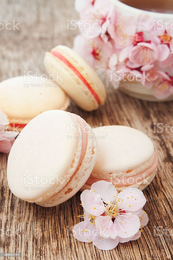 macaroons, coffee and flowers stock photo