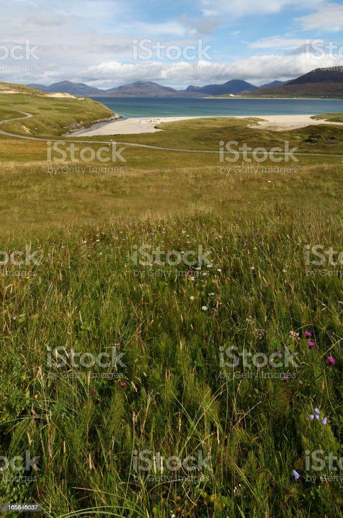 Machair grassland stock photo