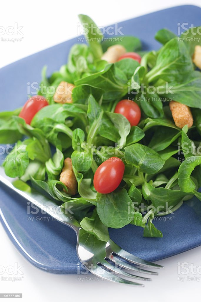 Mache Salad royalty-free stock photo