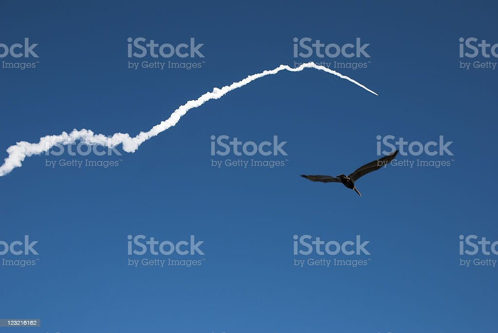 Machine and Nature in flight royalty-free stock photo