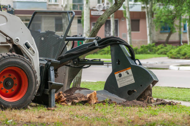 machine crushes the stump machine crushes the stump grinding stock pictures, royalty-free photos & images