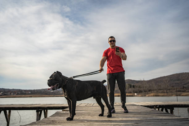 Macho man taking pictures with his dog stock photo