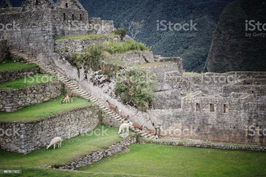 Machu Picchu one of the wonders of the world stock photo