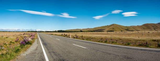 Mackenzie Country Panorama, New Zealand stock photo