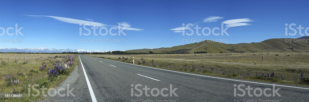 Mackenzie Country Panorama, New Zealand royalty-free stock photo