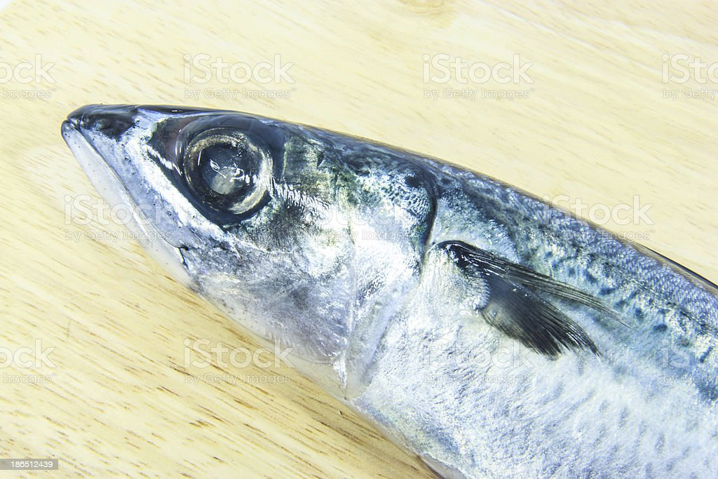 Mackerel on wooden  chopping block royalty-free stock photo