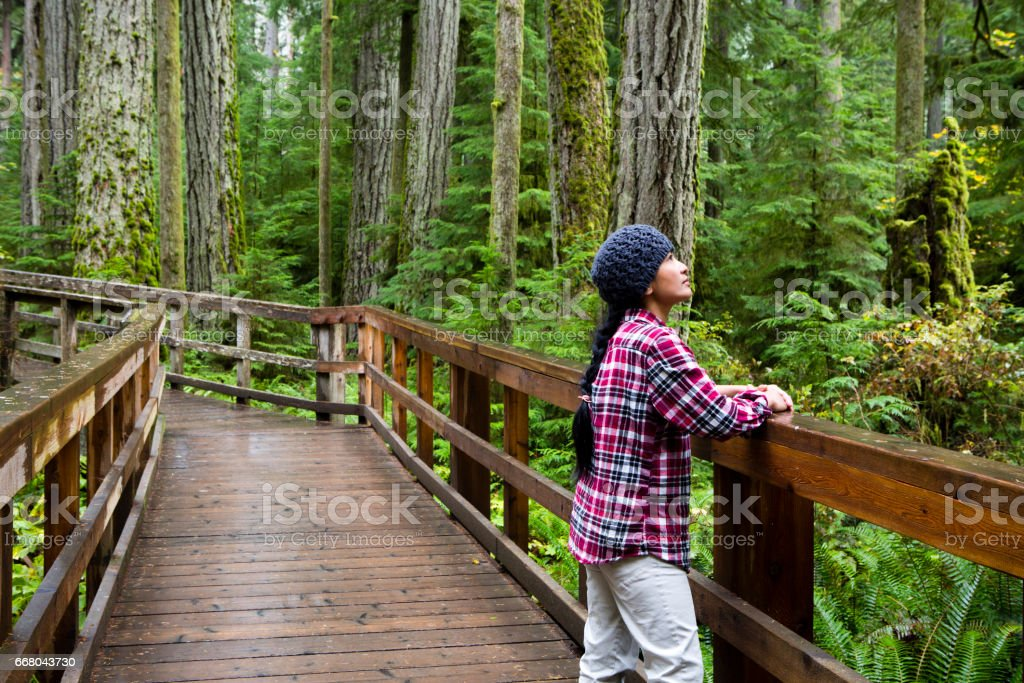 MacMillan Provincial Park Cathedral Grove Vancouver Island Wonderlust Journey stock photo