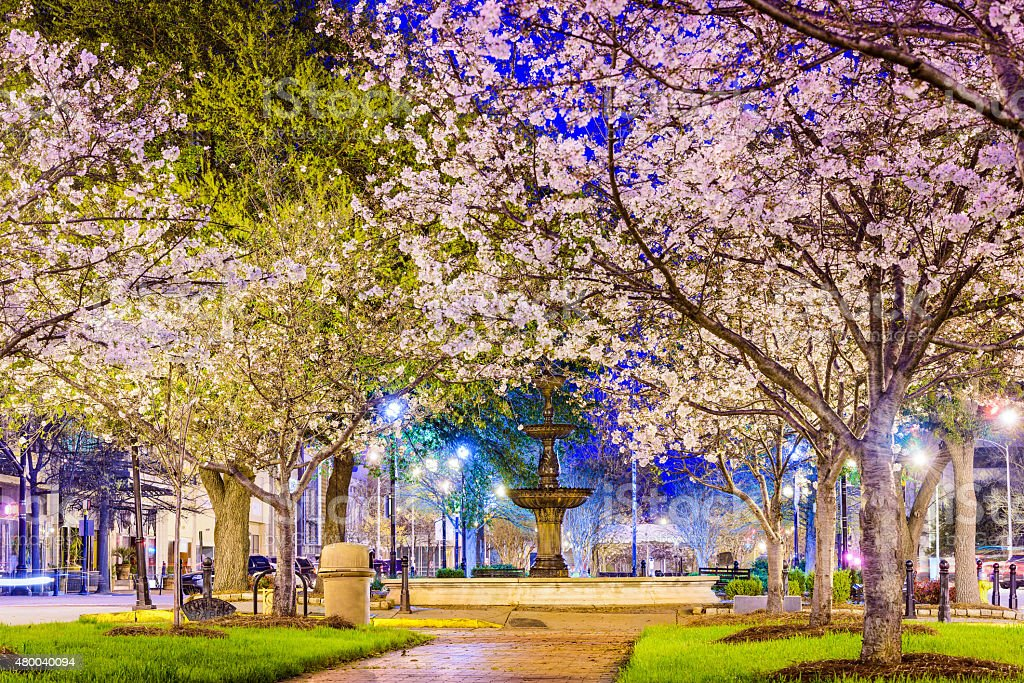 Macon Spring Macon, Georgia, USA downtown with spring cherry blossoms. 2015 Stock Photo