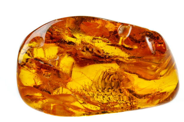 Macro Amber mineral stone with spider on white background Macro Amber mineral stone with spider on white background close up fossilized pitch stock pictures, royalty-free photos & images