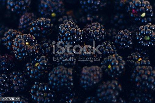 istock Macro Blackberries 490726144