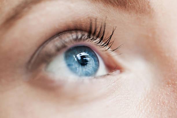 auge makro, blau - blaue kontaktlinsen stock-fotos und bilder