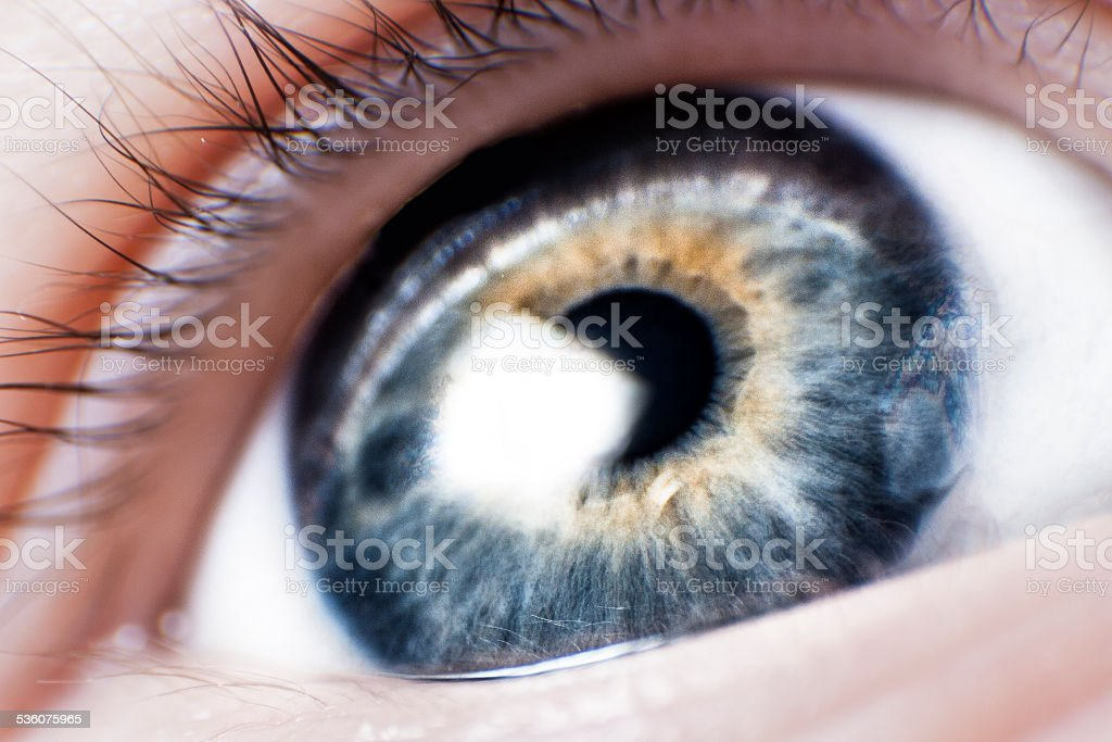 Macro Blue Eye stock photo