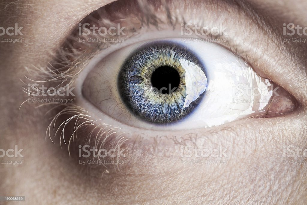 Macro blue eye with lots of details stock photo