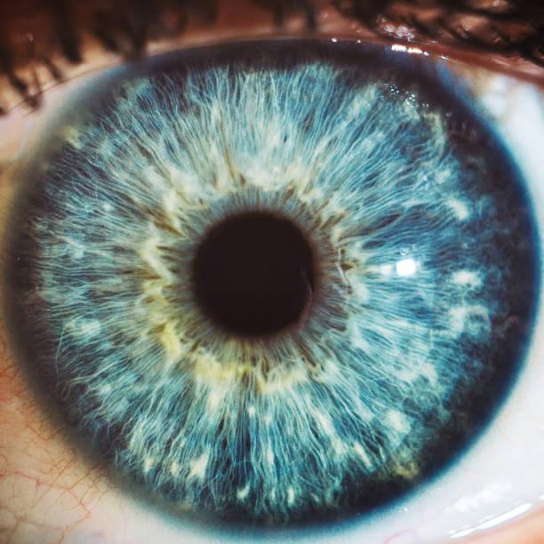 宏藍色眼睛顏色 - 特寫 個照片及圖片檔