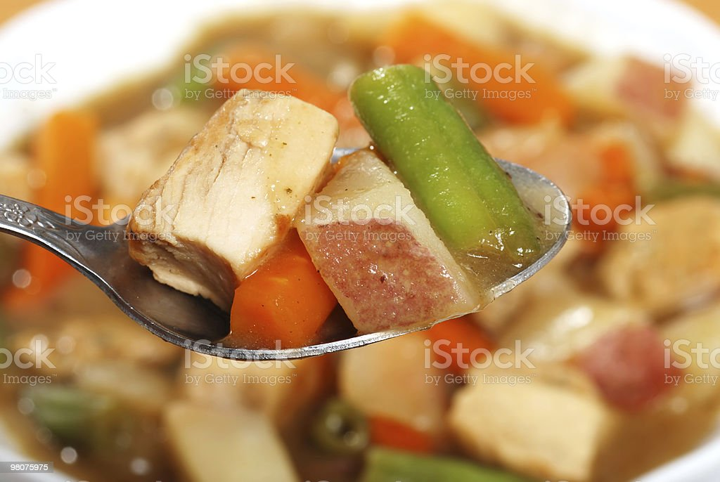 macro chicken stew on a spoon royalty-free stock photo