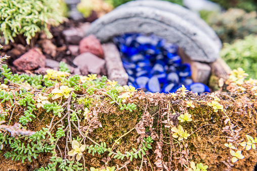 Macro closeup of miniature garden with moss grass, stone bridge