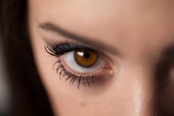 Macro Close-Up Young Woman's Eye stock photo