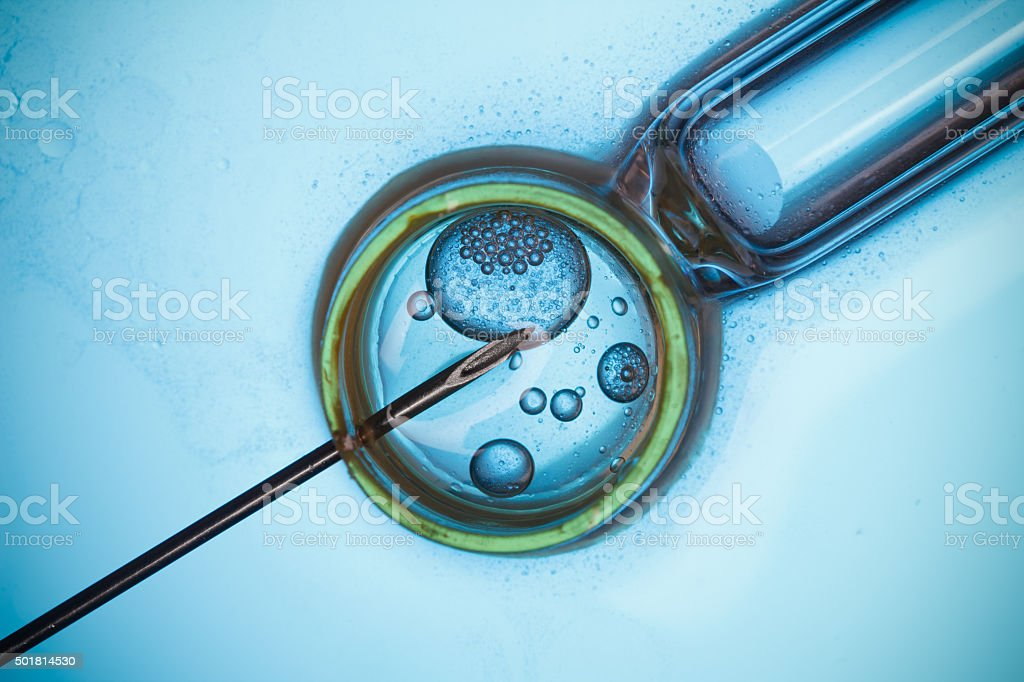 IVF macro concept royalty-free stock photo