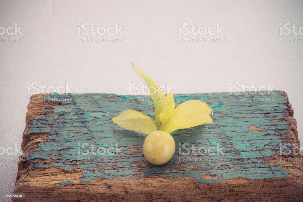 Macro detail image of Cape gooseberry on white background, Vinta stock photo