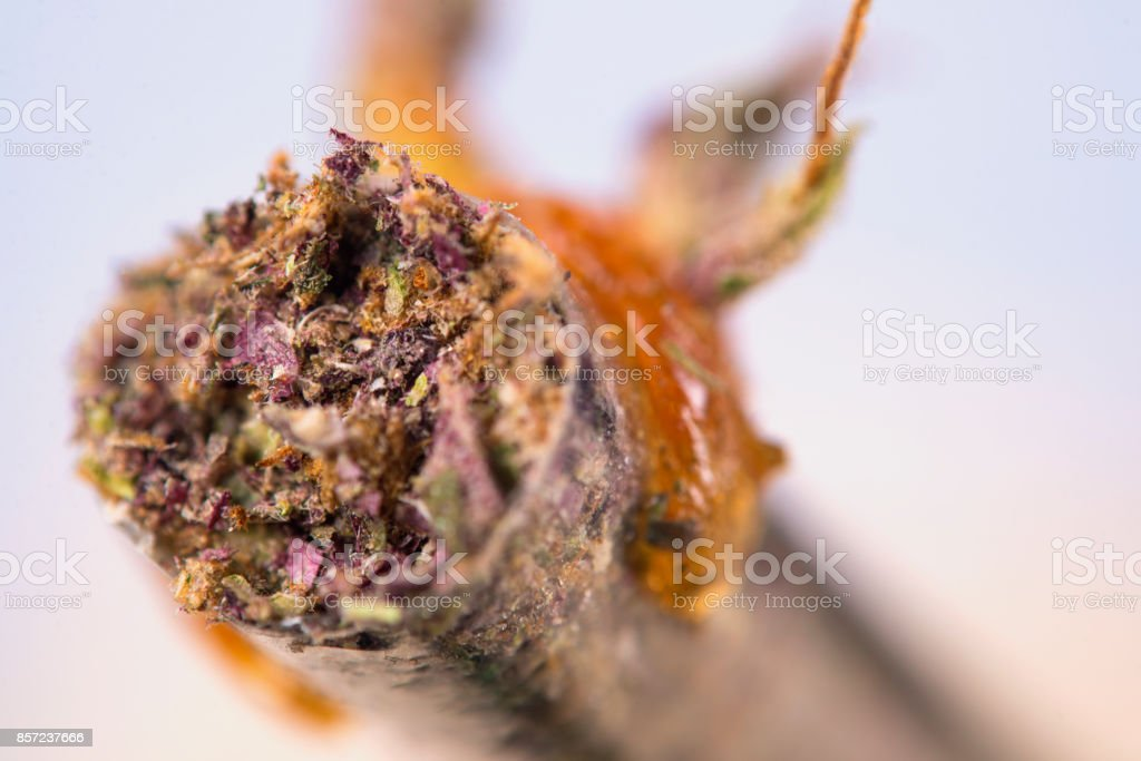 Macro detail of cannabis joint with some oil on the tip - medical marijuana concept stock photo