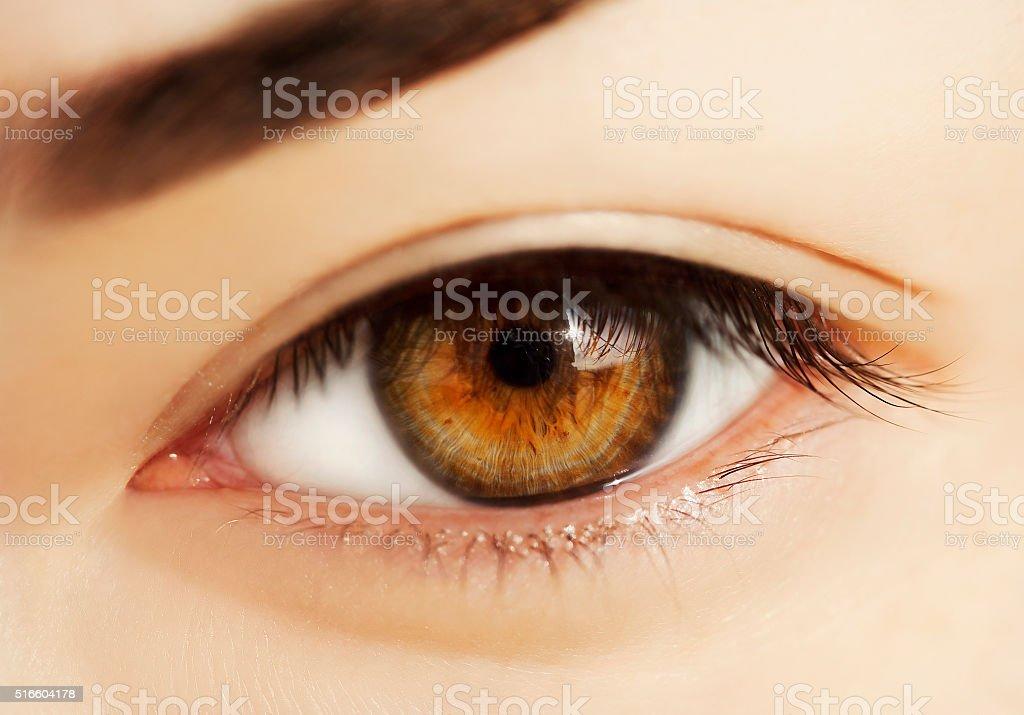 macro eye stock photo