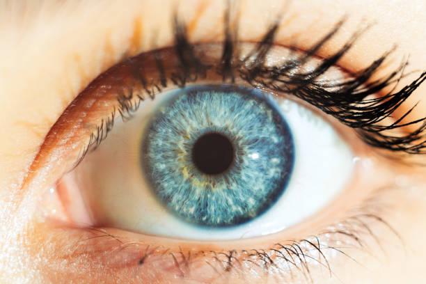 Macro human blue eyes Human blue eyes iris eye stock pictures, royalty-free photos & images
