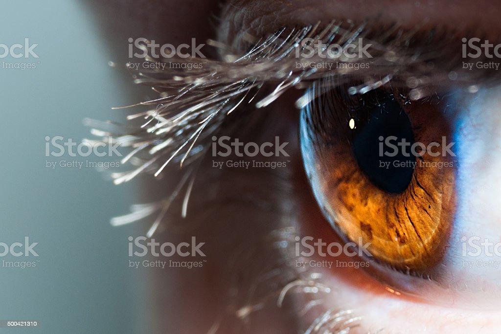 Detalle del ojo humano - foto de stock