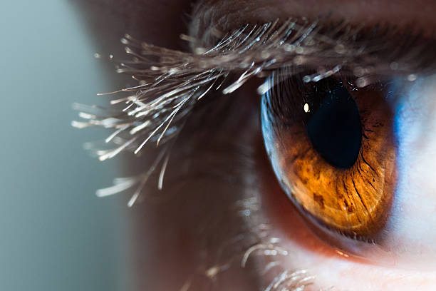 Macro Human Eye stock photo