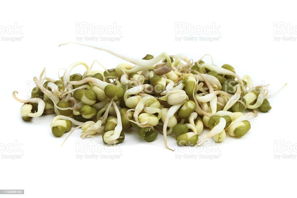 Macro image of mung bean sprouts stock photo
