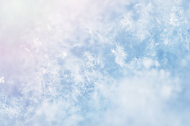 macro image of snowflakes. - snowflake background stock pictures, royalty-free photos & images