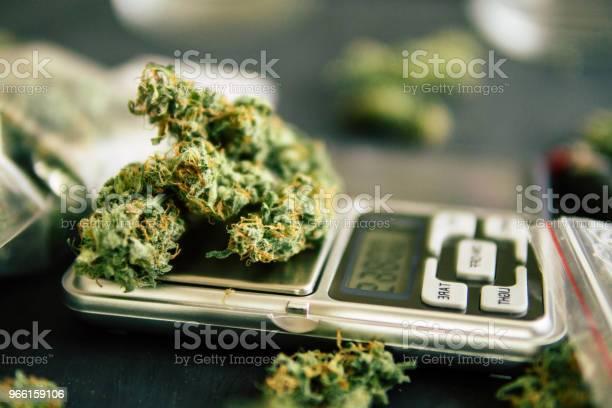 Macro Of Cannabis Marijuana Weed Flowers With Trichomes On Scales - Fotografias de stock e mais imagens de Agricultura