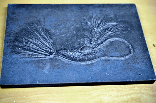 macro of fossilized sea lilly on dark slate rock