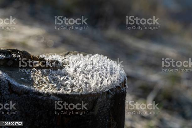 Photo of Macro of ice and snow coating during winter.