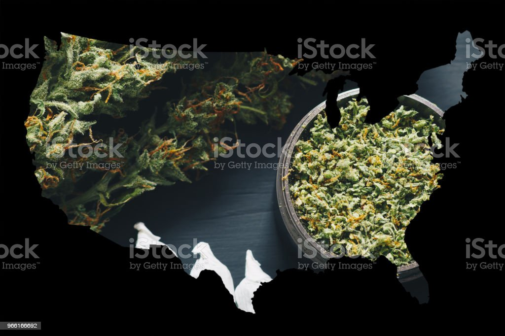 Macro of marijuana with trichomes and crushed weed and rolled joint in a grinder for chopping a canapis on a black table - Royalty-free Agriculture Stock Photo