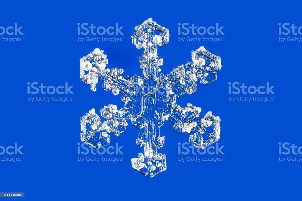 Macro photo of  Stellar dendrite snowflake on a blue background stock photo