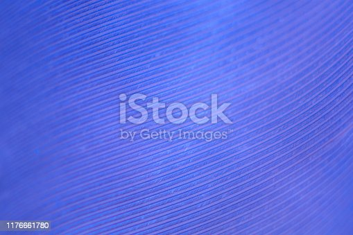 istock Macro photography feather abstract background art image. Blue and purple tones with delicate details and softness. 1176661780