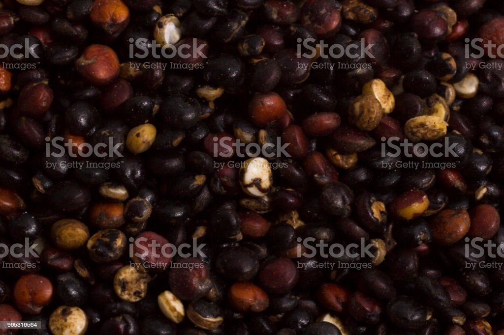 Macro photography of quinoa grains royalty-free stock photo