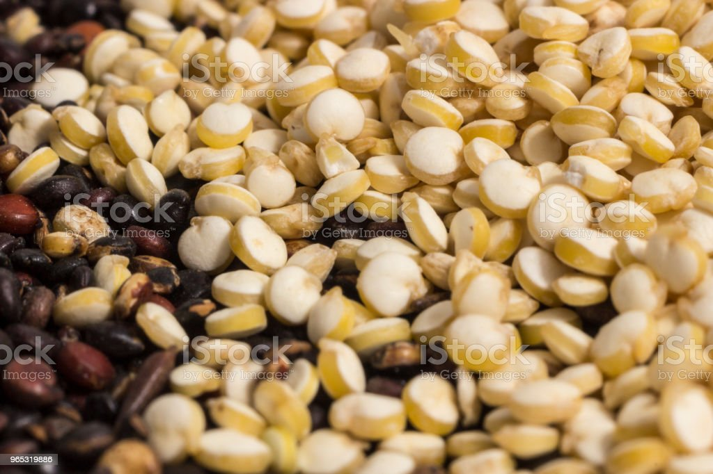 Macro photography of quinoa grains zbiór zdjęć royalty-free