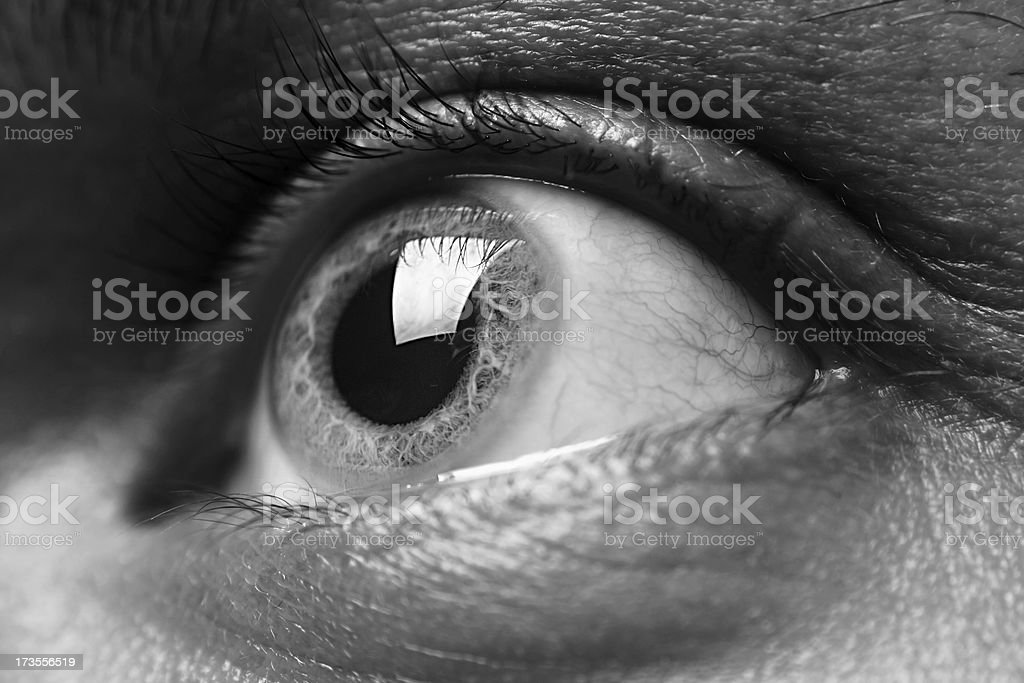 Macro shot of grey man's eye royalty-free stock photo