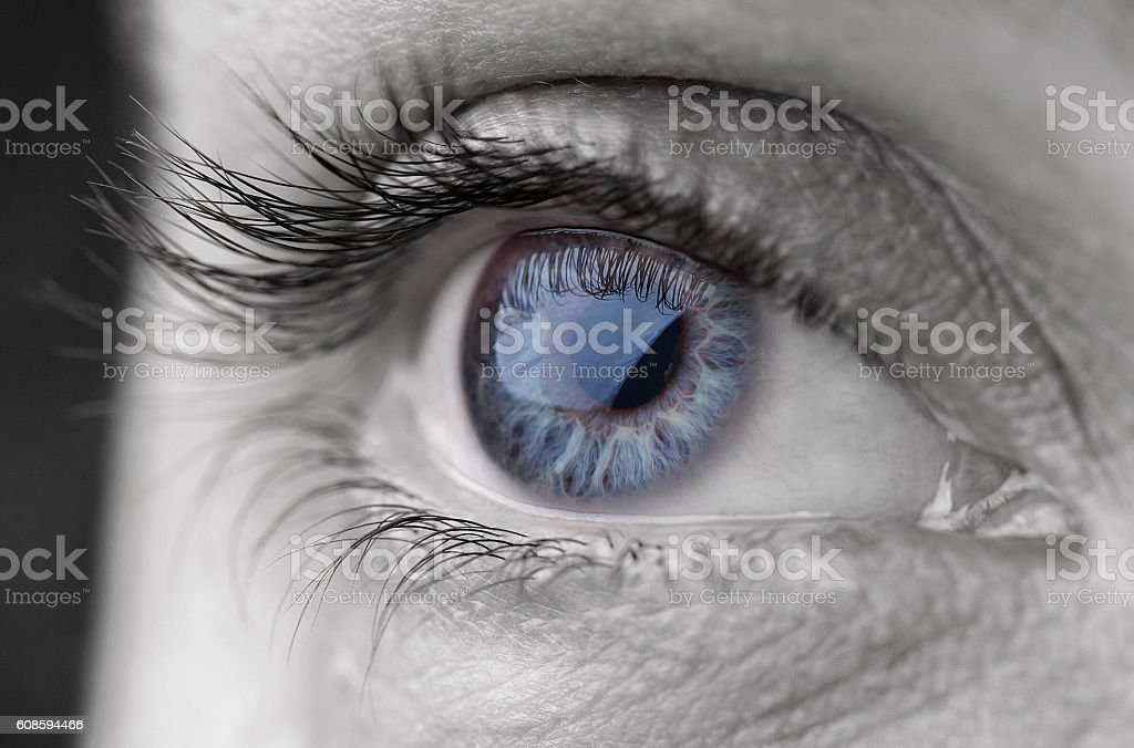 Macro shot of human beautiful grey eye.Toned image stock photo